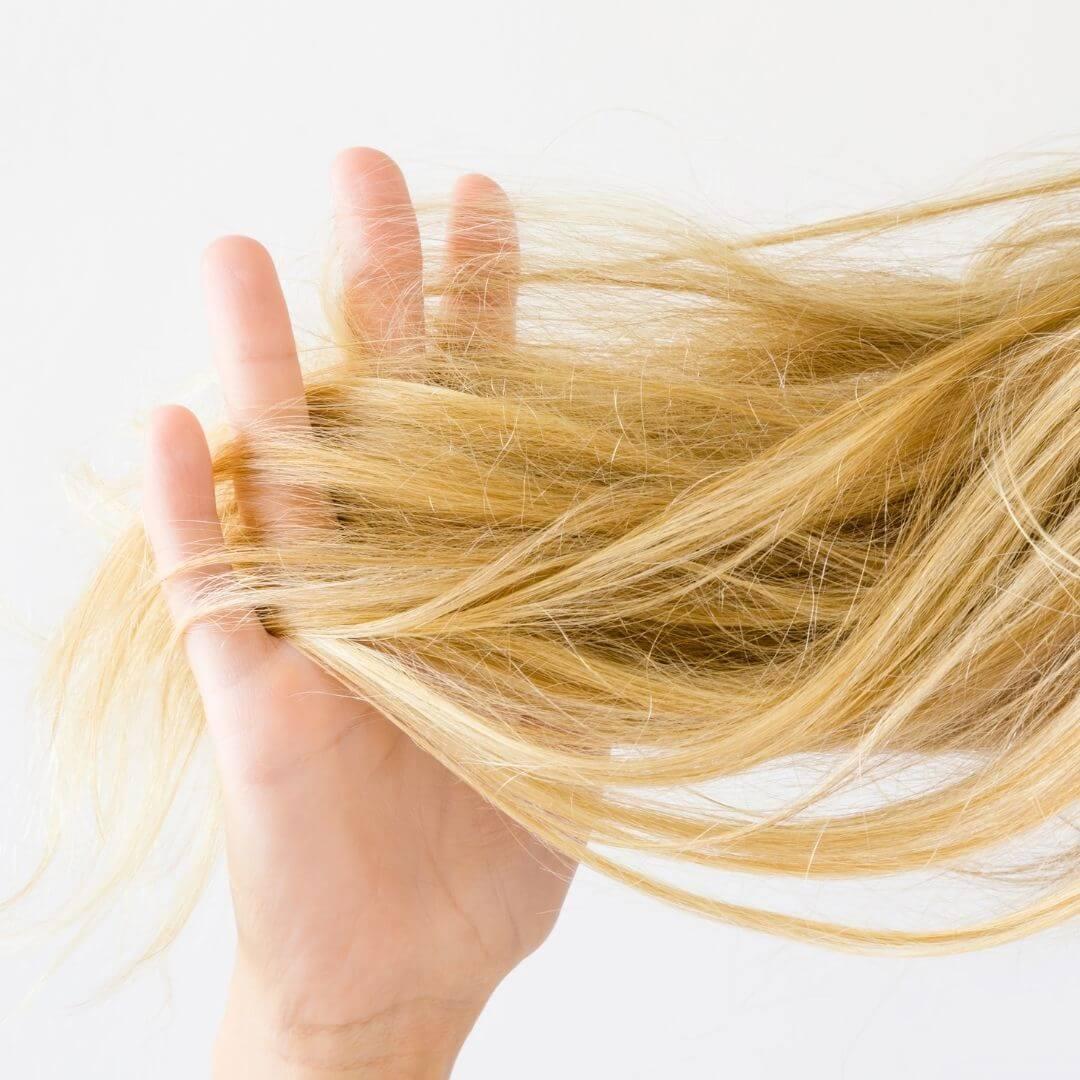 Fókuszban a hajvégápoló száraz hajra
